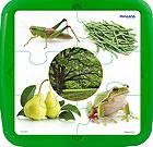Plastic puzle color verde